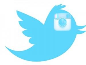 No habrá Instagram para los tuiteros