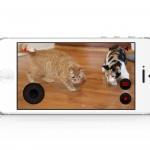 Petcube, una caja mágica y app que te permitirá comunicarte a distancia con tu mascota