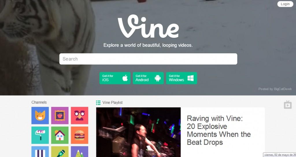 vine-nueva-web
