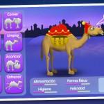 Entrena a tu camello con El Establo de los Reyes Magos