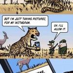 Cómic: ¿Cómo sería Instagram en el mundo animal?