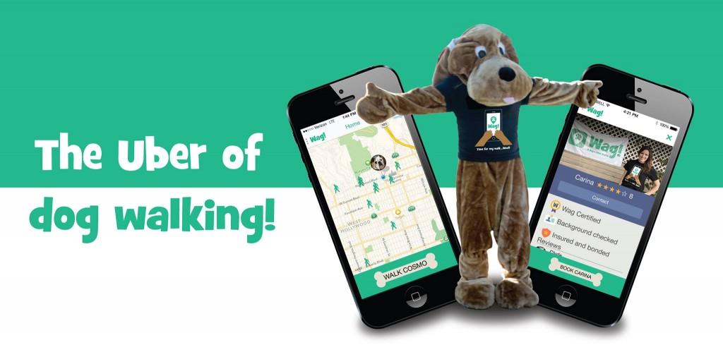 wag-pasear-perros-app