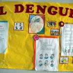 Anesvad prueba una app para combatir el dengue
