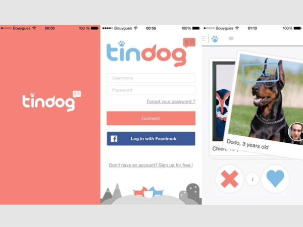 tindog-app