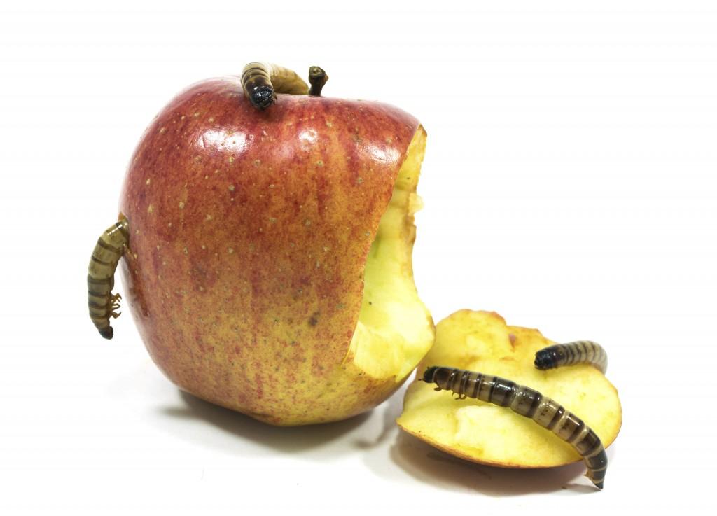 apple-xcodeghost