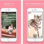 Telekitty, la primera app capaz de leer la mente de tu gato