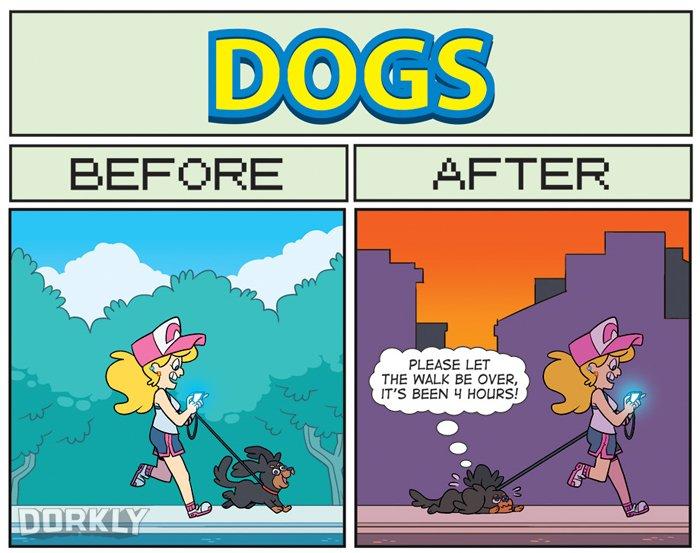 pokemon-go-perros