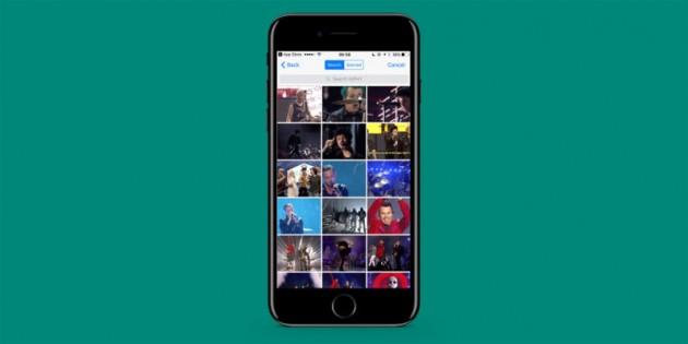 WhatsApp añade soporte para GIFs en iOS