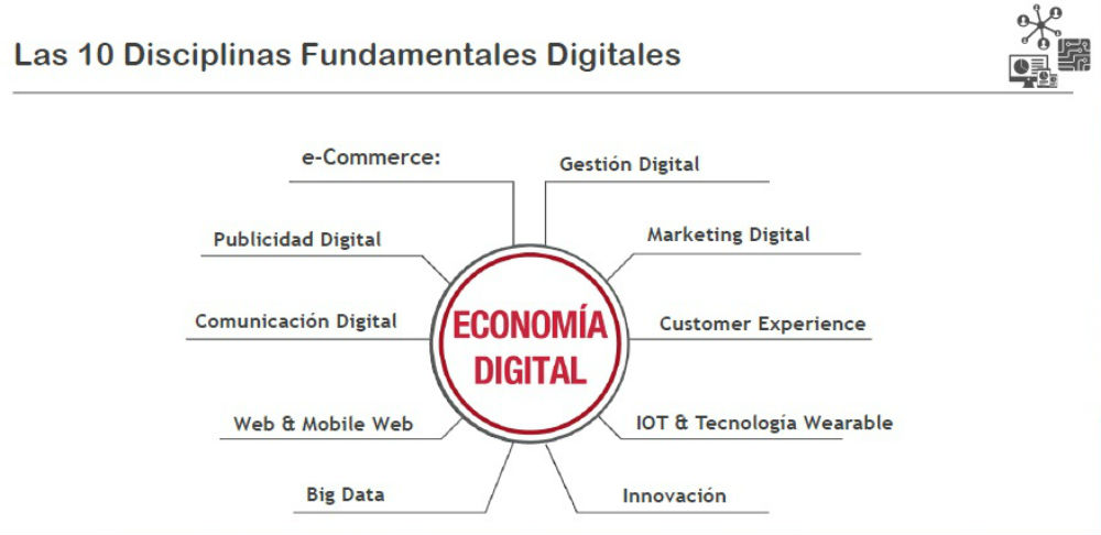 disciplinas-digitalizacion