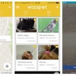 Wizapet, una app para encontrar mascotas perdidas