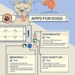 Las mejores apps para propietarios de mascotas