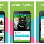 Miwuki, la app para adoptar mascotas y hacer donaciones a protectoras