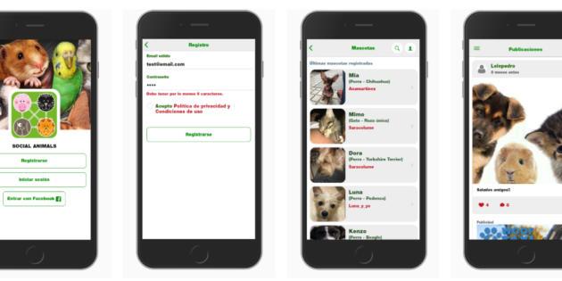 Social Animals, una red social para mascotas y sus dueños en formato móvil
