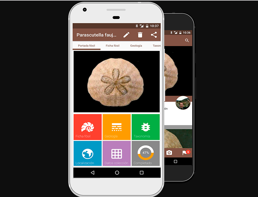 Fossil me, la app y red social para los amantes de los fósiles