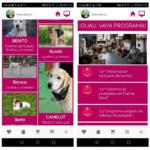 Animalove lanza una app para promover la adopción animal