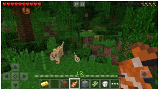 Conseguir una cuenta gratis de Minecraft o administrar la app de tu negocio se puede hacer desde el móvil
