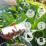 Una app para combatir los incendios forestales y otra para automatizar la labor de los agricultores se hacen con los premios RuralApps 2019