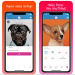 My Talking Pet, la app para doblar a tu mascota que triunfa entre las celebrities