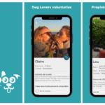 Tibiboo, la app para poder disfrutar de los perros aunque no seas dueño de uno