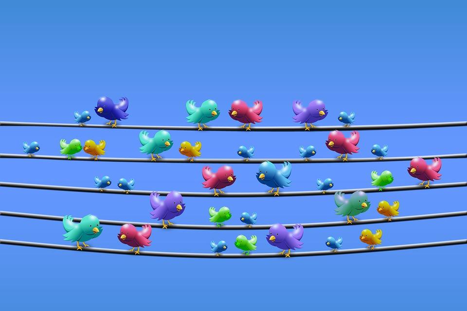 Las cuentas que te harán recuperar la fe en Twitter